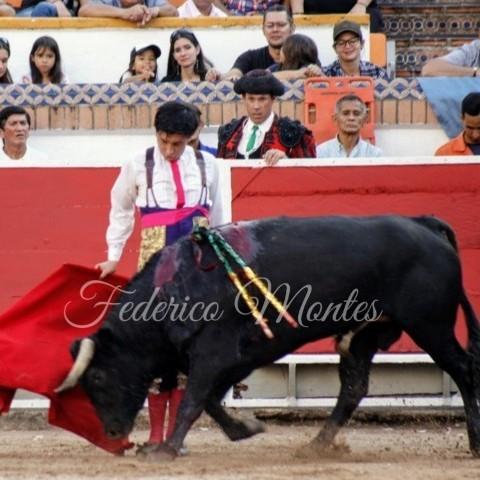 Diario Frontera, Frontera Digital,  SAN SEBASTIÁN, Deportes, ,Oreja repartidas para Almeida y Calderón  ante nobles utreros de Los Aranguez