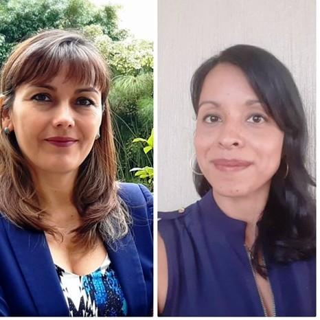 Diario Frontera, Frontera Digital,  Transparencia Venezuela, MÉRIDA, Regionales, ,Christi Rangel: El fenómeno de las noticias falsas  se ha convertido en una amenaza para la democracia.