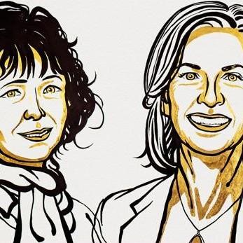 Diario Frontera, Frontera Digital,  NOBEL DE QUÍMICA 2020, Tecnología, ,Nobel de Química de 2020  para las creadoras de las «tijeras genéticas»