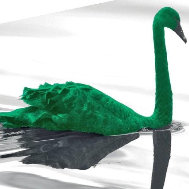 Diario Frontera, Frontera Digital,  CISNE VERDE, Internacionales, ,Qué es el «cisne verde» que alarma a los economistas  y por qué podría desencadenar la próxima crisis financiera