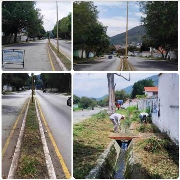 Diario Frontera, Frontera Digital,  DESMALEZAMIENTO, Regionales, ,Avanza desmalezamiento de la avenida Universidad de Mérida