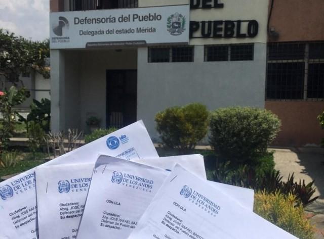 Diario Frontera, Frontera Digital,  ODH - ULA, Regionales, ,ODH-ULA exige acciones y soluciones ante nuevos casos de COVID-19 en Mérida