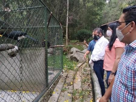 Diario Frontera, Frontera Digital,  GOBIERNO DE MÉRIDA, Regionales, ,Animales sanos y bien cuidados  habitan el Parque Zoológico  Chorros de Milla