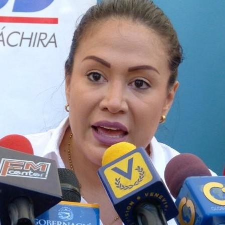 Diario Frontera, Frontera Digital,  TÁCHIRA, Nacionales, ,Gobernadora Laidy Gómez denuncia  colapso en zona metropolitana del Táchira
