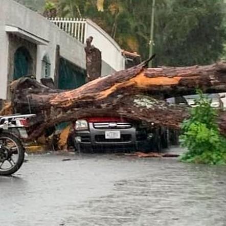 Diario Frontera, Frontera Digital,  GONZALO, Nacionales, ,Lagunas, árboles caídos y volcamientos  tras fuertes lluvias por depresión tropical Gonzalo