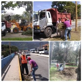 """Diario Frontera, Frontera Digital,  ALCALDÍA DE MÉRIDA, Regionales, ,Alcides Monsalve: """"Parques y avenidas  reciben la acción municipal"""""""