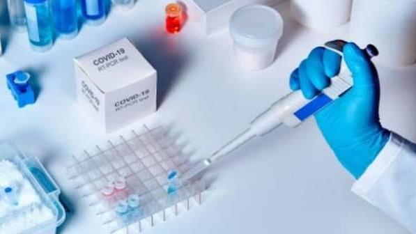 http://www.fronteradigital.com.ve/Oxford reanuda ensayos de vacuna contra el COVID-19