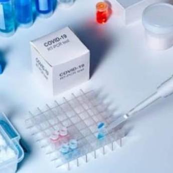 Diario Frontera, Frontera Digital,  VACUNA DE OXFORD, Salud, ,Oxford reanuda ensayos de vacuna contra el COVID-19