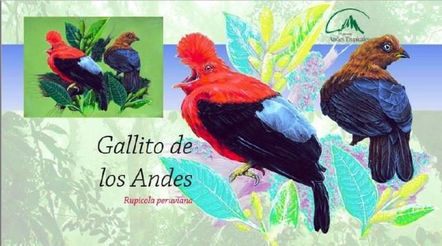 Diario Frontera, Frontera Digital,  Proyecto ANDES SUR fase II, Regionales, ,Curso especializado para guías  explora modalidad de observación de aves