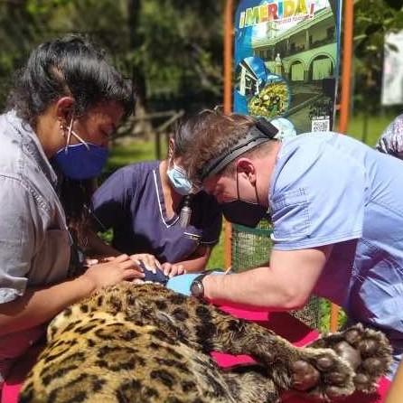Diario Frontera, Frontera Digital,  CORMETUR, Regionales, ,Cormetur garantiza cuidados y buena alimentación  a los animales del Parque Zoológico Chorros de Milla