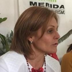 Diario Frontera, Frontera Digital,  CÁMARA DE TURISMO DE MÉRIDA, Regionales, ,Aeropuerto El Vigía debe contar con óptimas condiciones para su operatividad