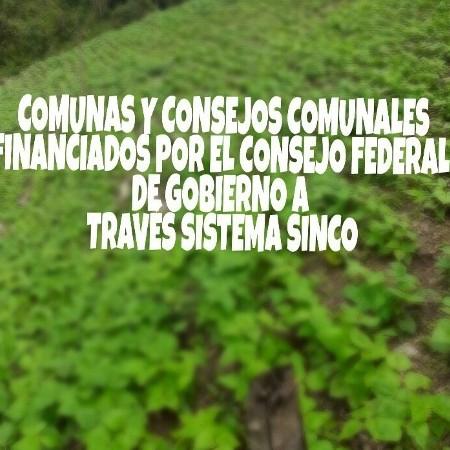 Diario Frontera, Frontera Digital,  JEHYSON GUZMÁN, Regionales, ,Jehyson Guzmán ha respaldado  70 proyectos de Comunas y Consejos Comunales en 2021