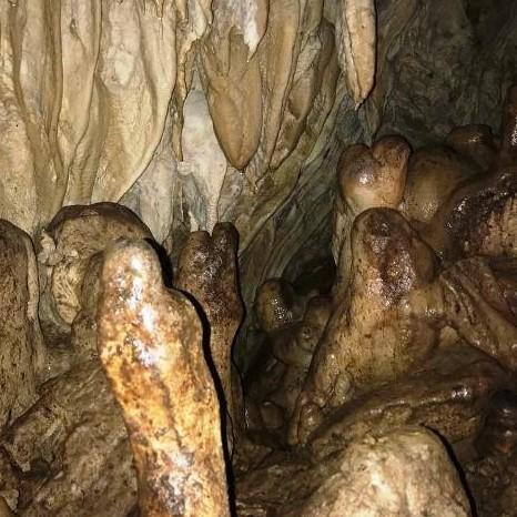 Diario Frontera, Frontera Digital,  cueva descubierta en Zea, Mocoties, ,Expertos recomiendan no visitar cueva descubierta en Zea