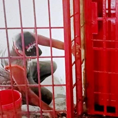 Diario Frontera, Frontera Digital,  INSTITUTO DE CULTURA DE ALBERTO ADRIANI, Panamericana, ,INSTITUTO DE CULTURA EFECTUÓ REPARACIONES  AL CENTRO CULTURAL MARIANO PICÓN SALAS DE EL VIGÍA