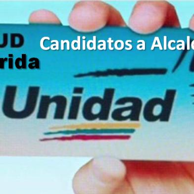 Diario Frontera, Frontera Digital,  DEDOCRACIA EN LA MUD MERIDEÑA, Deportes, ,MUD –Mérida tiene listo sus 23 candidatos alcaldes  para salir al ruedo electoral  para este 21N
