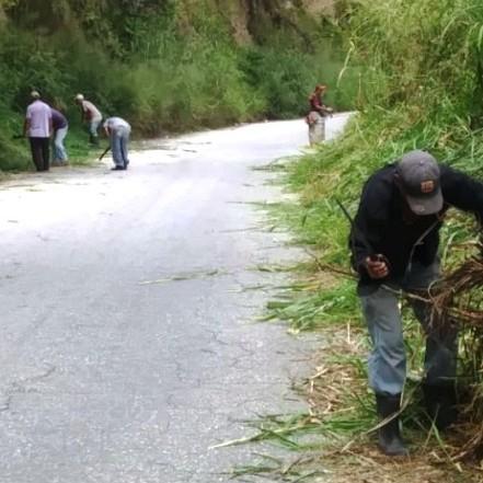 Diario Frontera, Frontera Digital,  ALCALDÍA DE MÉRIDA, Regionales, ,Alcaldía de Mérida inició desmalezamiento de la vía a Ejido por Zumba