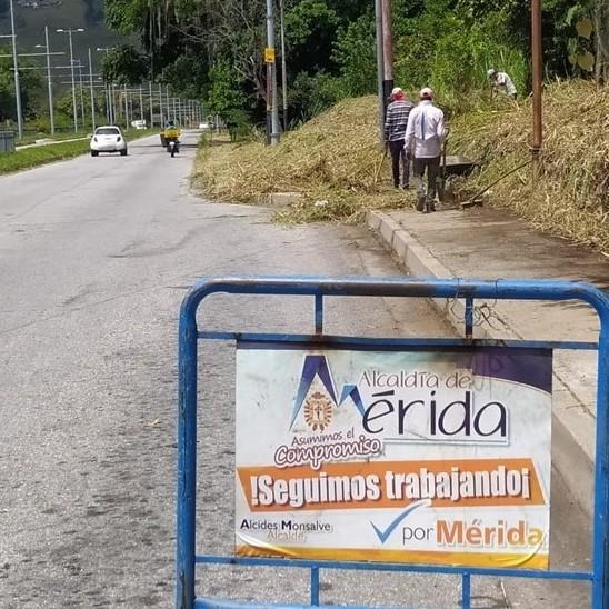 Diario Frontera, Frontera Digital,  ALCALDÍA DE MÉRIDA, Regionales, ,Ayuntamiento Capitalino realiza operativo integral  de desmalezamiento avenida Andrés Bello