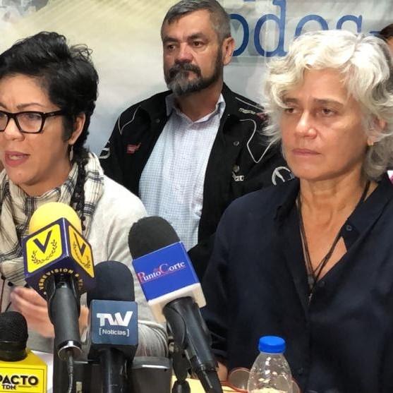 Diario Frontera, Frontera Digital,  OEV, Politica, ,Nuevo CNE: PSUV debe seguir el procedimiento constitucional
