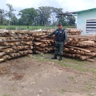 Diario Frontera, Frontera Digital,  GNB, Sucesos, ,GNB retiene 360 estantillos de madera Roble en Guachizón