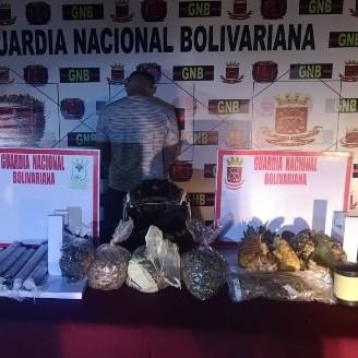 Diario Frontera, Frontera Digital,  QUEBRADÓN, Sucesos, ,GNB atrapó hombre con dos piñas rellenas con marihuana