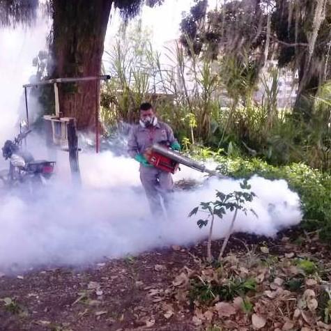 Diario Frontera, Frontera Digital,  GOBIERNO DE MÉRIDA, Salud, ,Disminuyeron los casos de malaria y dengue  durante 2020 en el estado Mérida