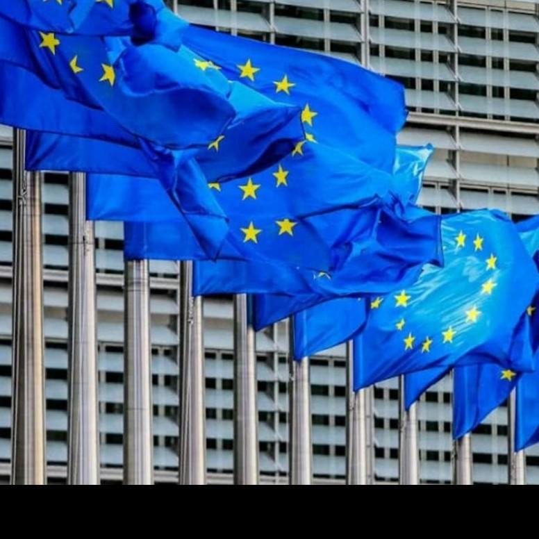 Diario Frontera, Frontera Digital,  UNIÓN EUROPEA, Internacionales, ,UE podría retirar su misión de observación  para el 21-N si cambian las condiciones