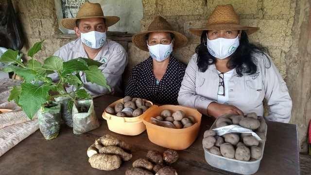 Diario Frontera, Frontera Digital,  proyecto ANDES SUR fase II, Regionales, ,Comunidades surmerideñas inician huertos agroecológicos