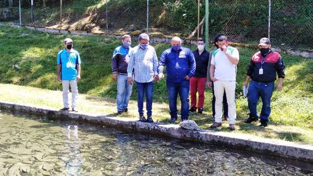 Diario Frontera, Frontera Digital,  TRUCHICULTURA LA MUCUY, Páramo, ,Reactivan producción de truchas  en la estación piscícola La Mucuy con 70 mil alevines