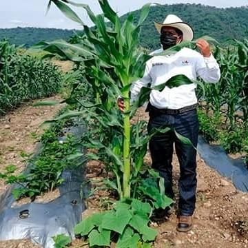 Diario Frontera, Frontera Digital,  Fundación Programa Andes Tropicales, Regionales, ,Relacionan costo de alimentos con el Cambio Climático