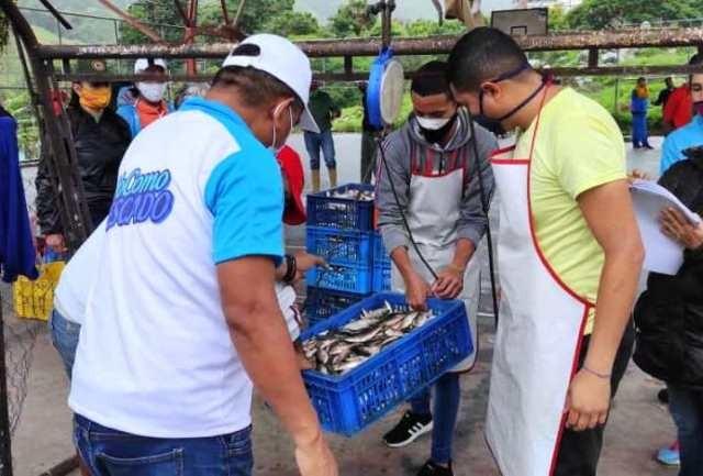 Diario Frontera, Frontera Digital,  SARDINAS EN EJIDO Y MÉRIDA, Regionales, ,10 toneladas de sardina distribuyó Minpesca en Ejido y Mérida