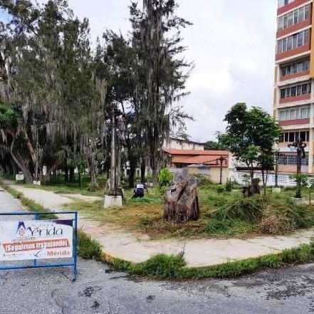 Diario Frontera, Frontera Digital,  ALCALDÍA DE MÉRIDA, Regionales, ,Alcaldía de Mérida avanza con  Plan de Desmalezamiento y Ornato en la avenida Urdaneta